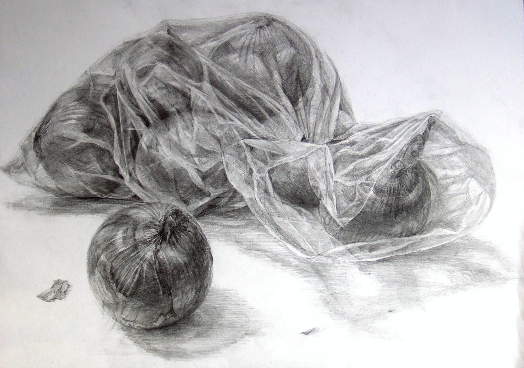生徒作品59 鉛筆デッサン<卓上静物> 4ツ切り判 B187画用紙 【日本画系】