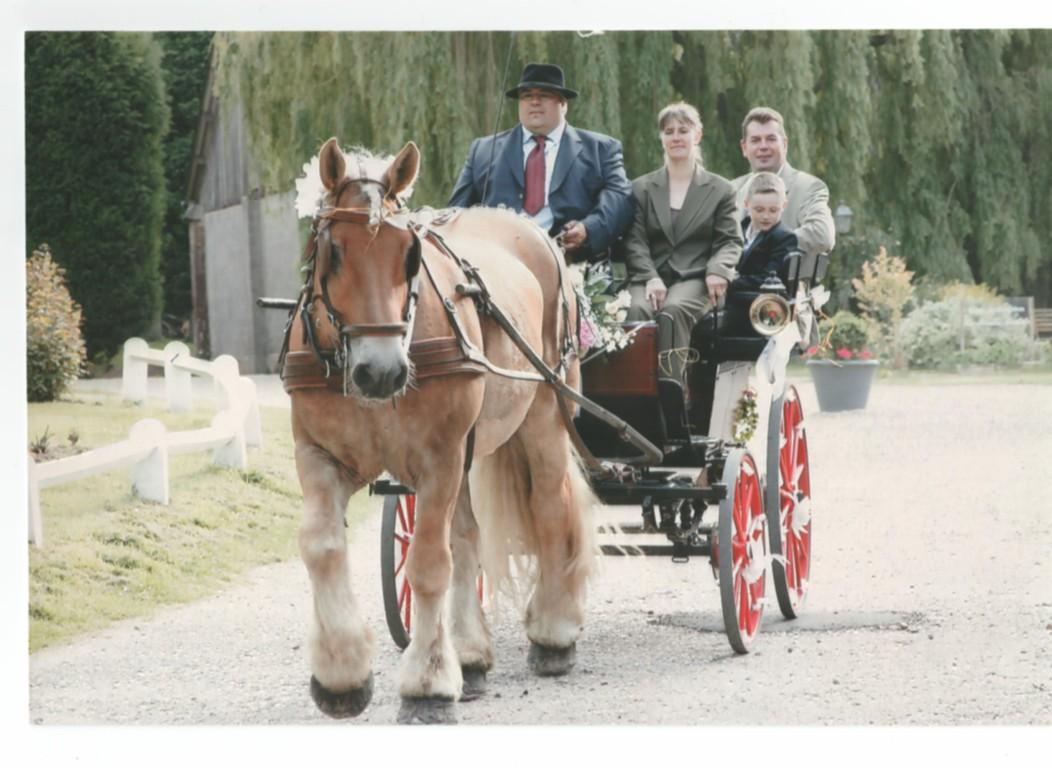 PROMENADE DES INVITES MARIAGE PAVILLON DE JOINVILLE EU