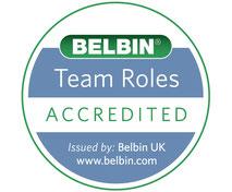 Teamrollen nach BELBIN Test