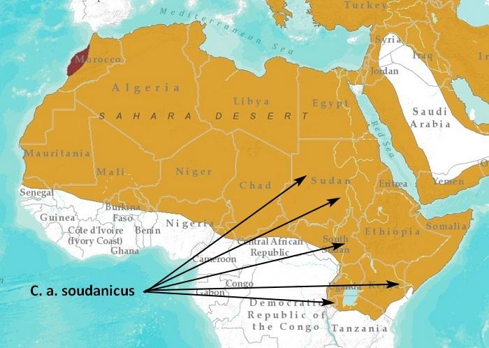 Map IUCN Red List.