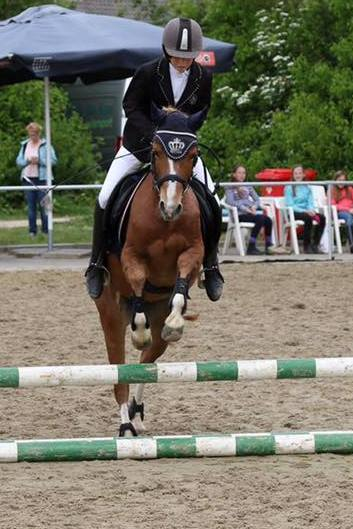 Oostdijk's Dancing Nimue, 2007, filly (Mintfield Aristocrat) sold as a 2 year old