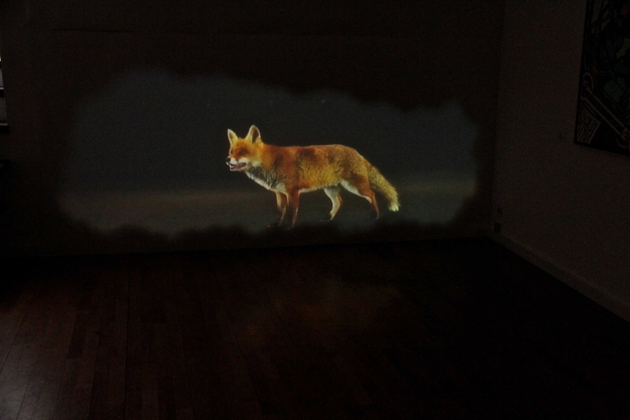 © Bertrand Gadenne, Galerie Claire Gastaud, VIDEOFORMES 2013