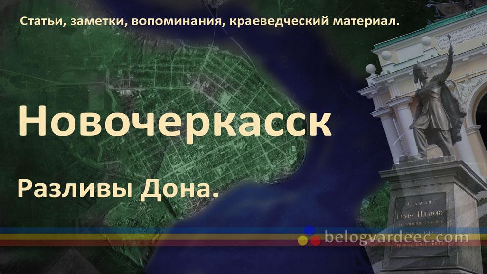 Полуостров Новочеркасск. Разливы Дона.
