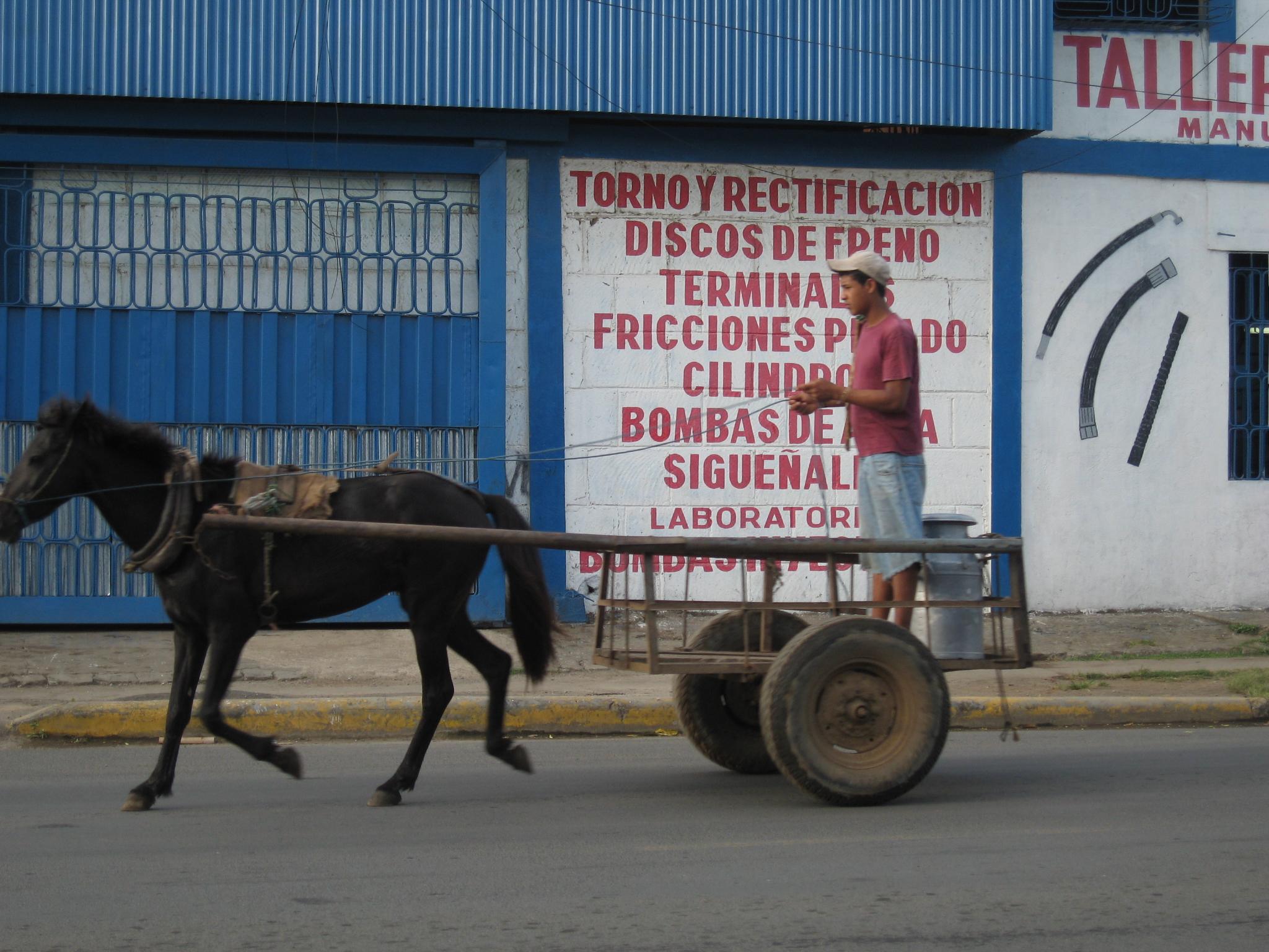 Chariot à un cheval vapeur au Honduras