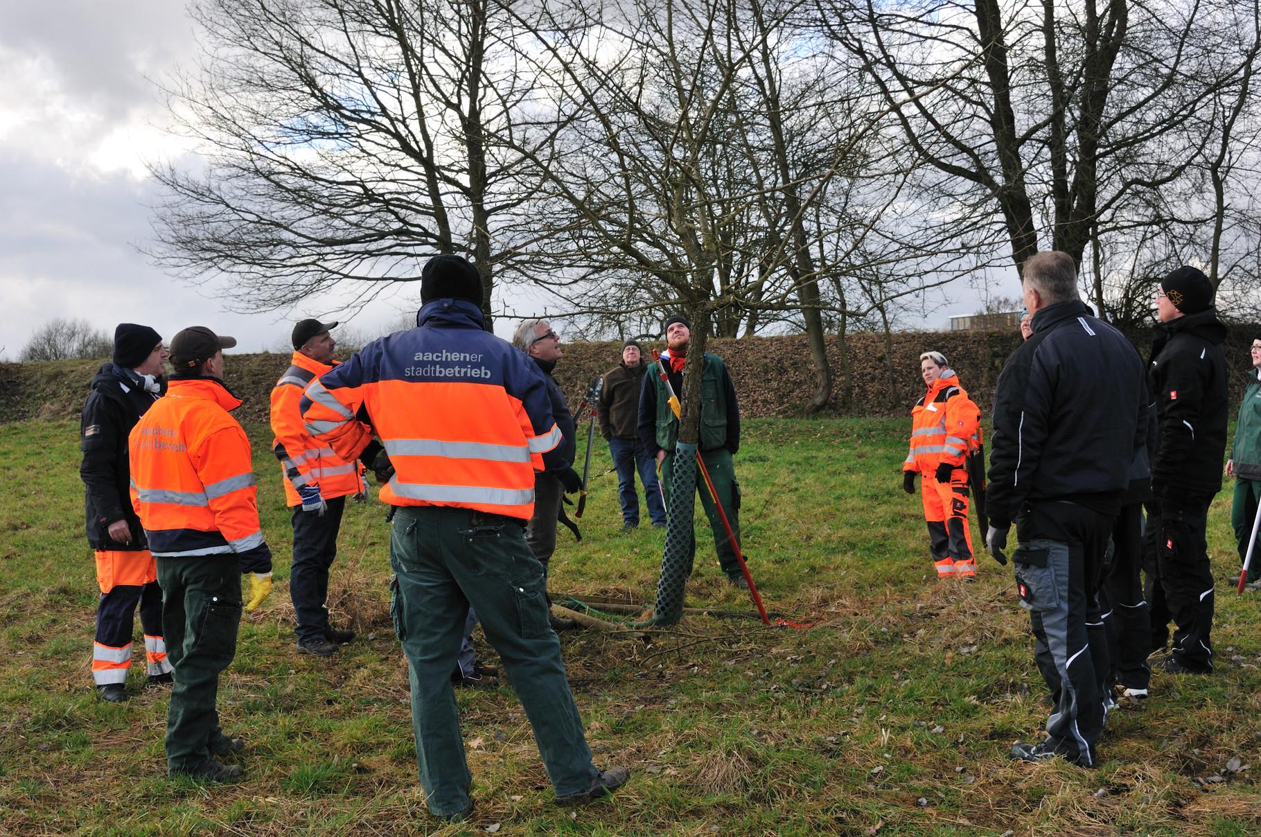 Schnittlehrgang in Kooperation mit der Bildungsstätte Gartenbau Grünberg