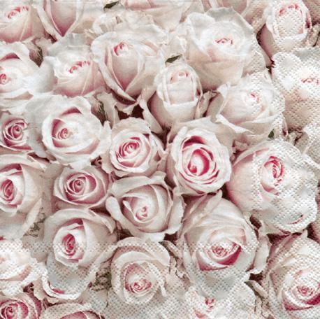 Rosas , Tienda de bellas artes y manualidades