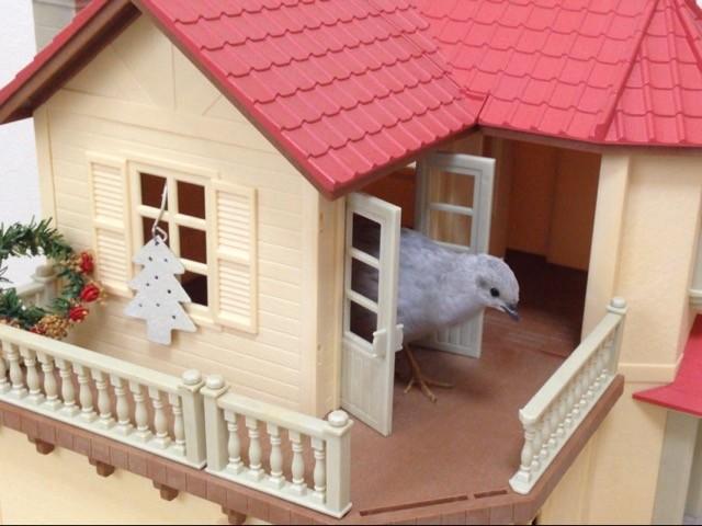 09ハーちゃんと人形の家
