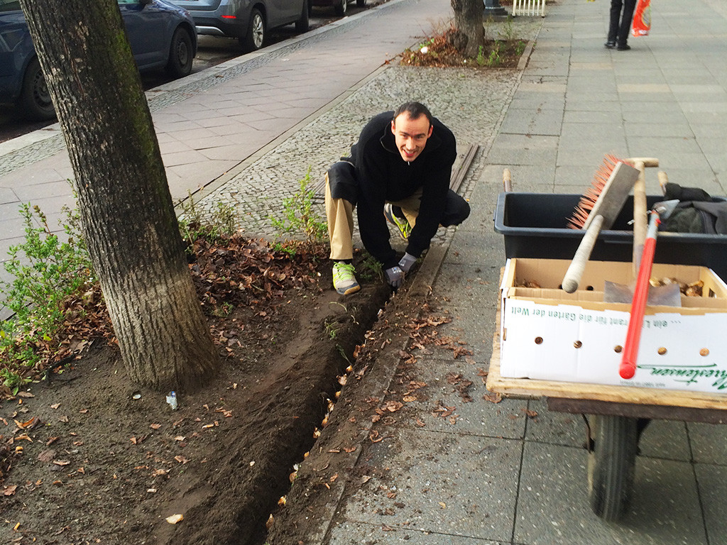 Mühsam ist es die 3 Meter einer Baumscheibe zu bepflanzen