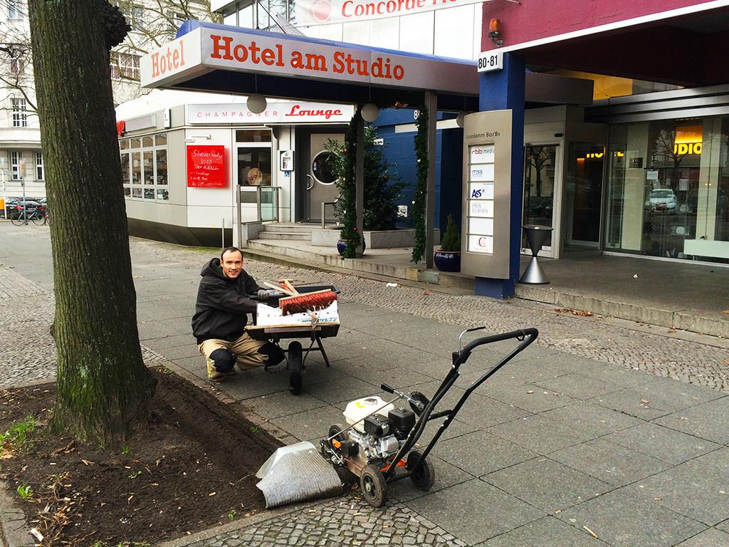 Vom Sophie-Charlotte-Platz bis zum Theodor-Heuss-Platz werden Blumenzwiebeln gesetzt.