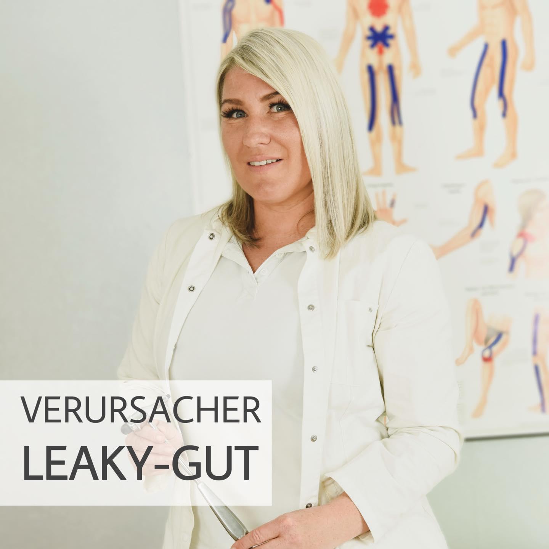 Leaky-Gut / Verursacher der Darmbarrierestörungen