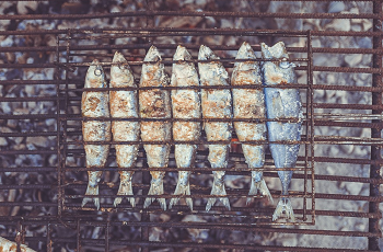 (魚を食べる事で痴呆症は防げる)