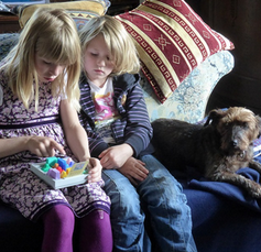 犬を飼う際には家族と予め話し合いを