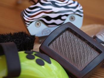 (ブラシで毛をとかす方法の前に、基礎を知ろう)