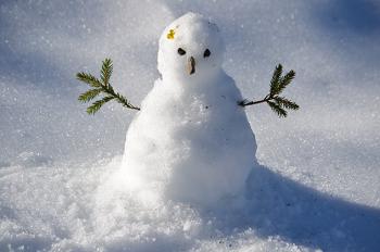 ポメラニアンの冬の過ごし方