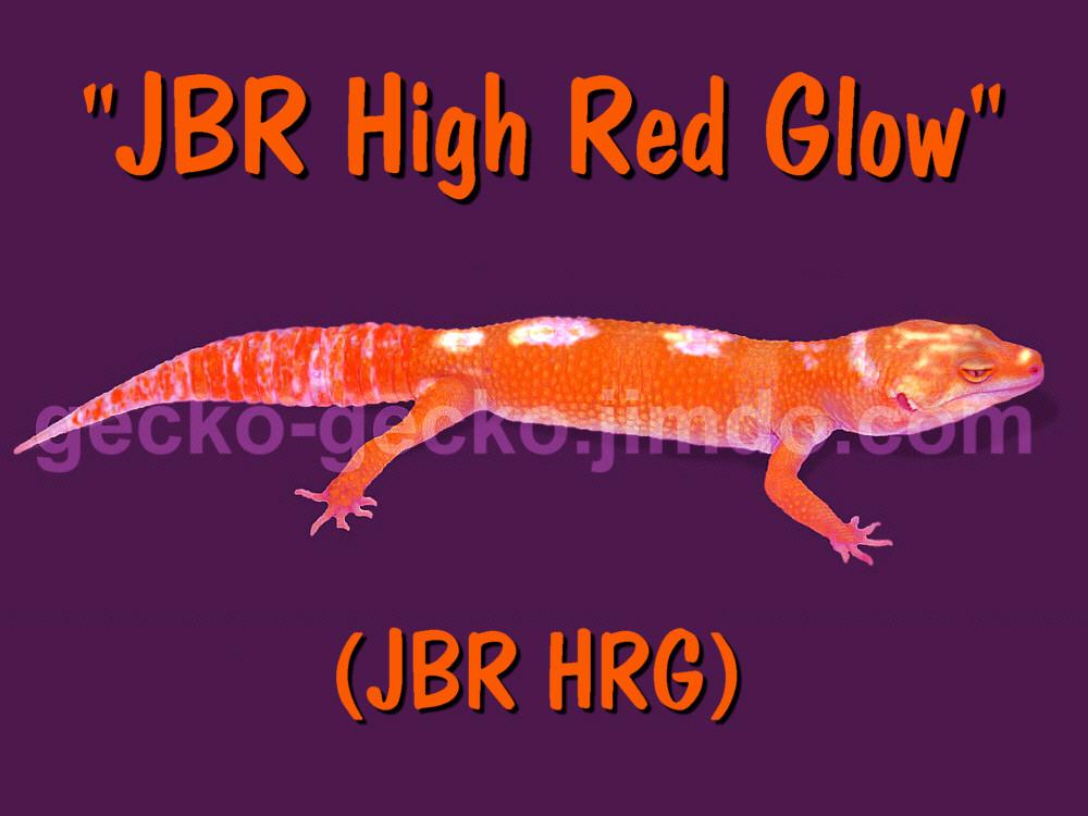JBR Glow