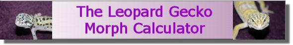 Morph-Kalkulator