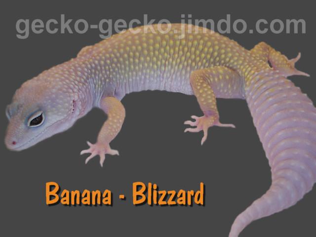 Banana Blizzard