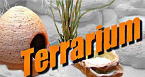Logo-Terrarium 300x160