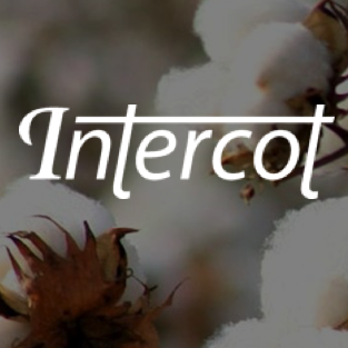 Intercot / Garn