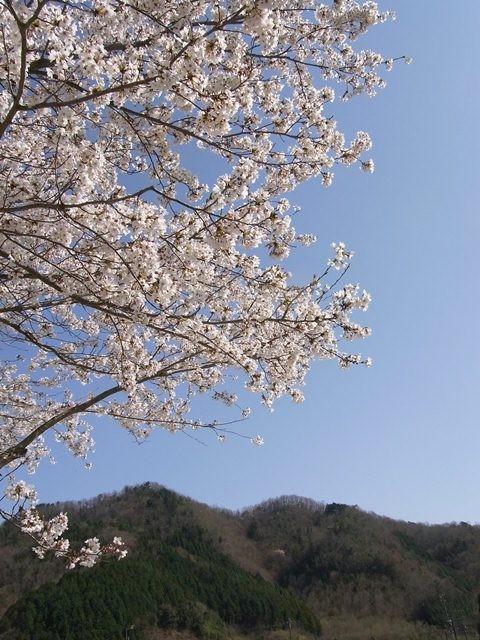 Nose, Osaka (Honshu)