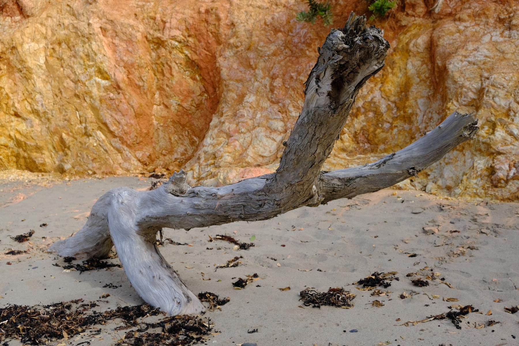 Mc Gregors Beach