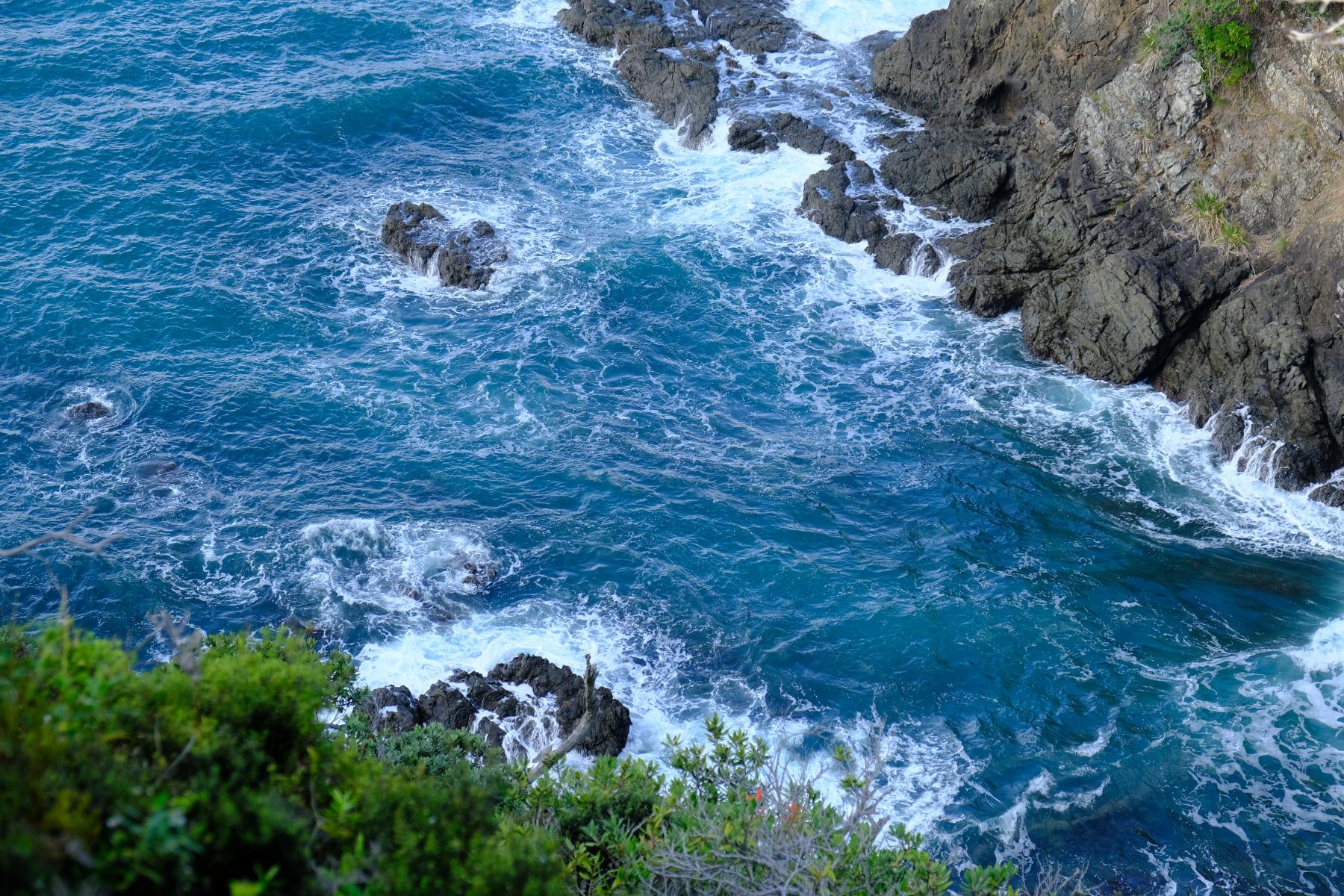 Aussicht vom Whale Bay Track