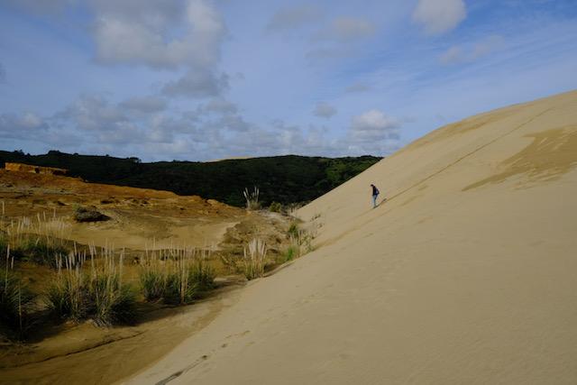 Die großen Sanddünen von Te Paki