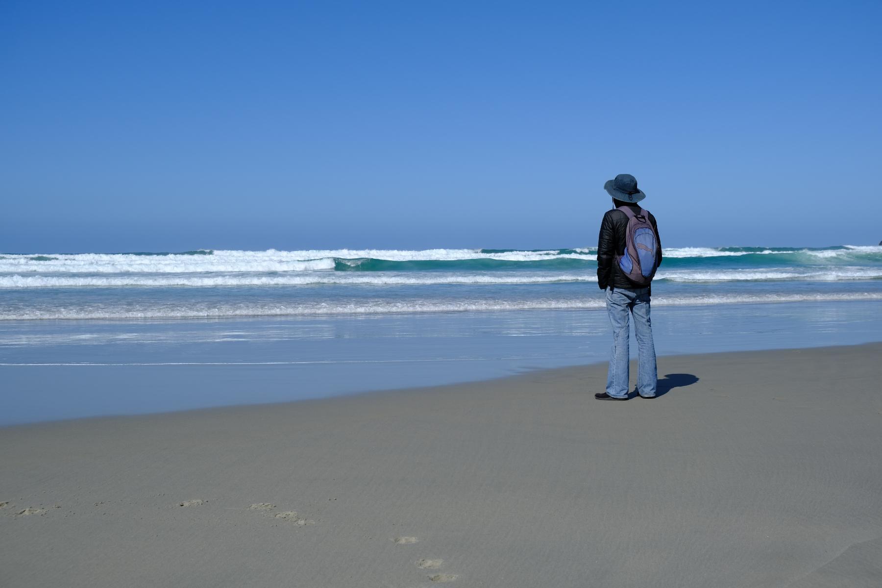 Tomahawk Beach - Peninsula Otago