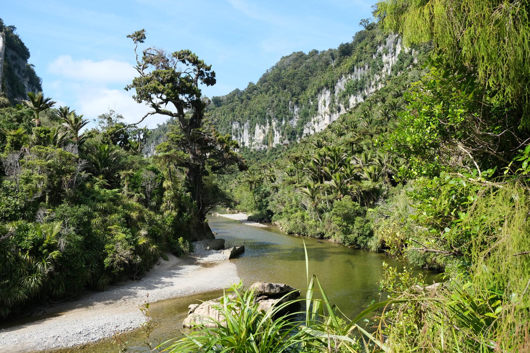 Porarari River Track