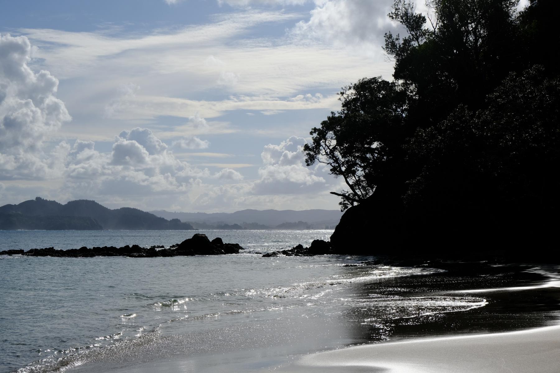 Whale Bay Beach