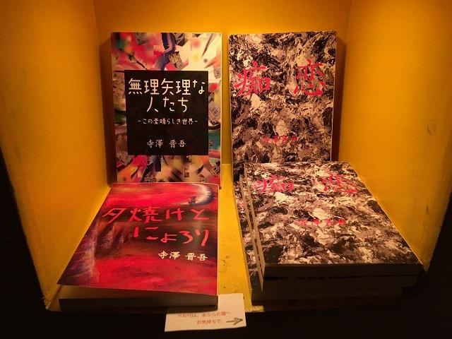 「寺沢ごど」が書いた小説