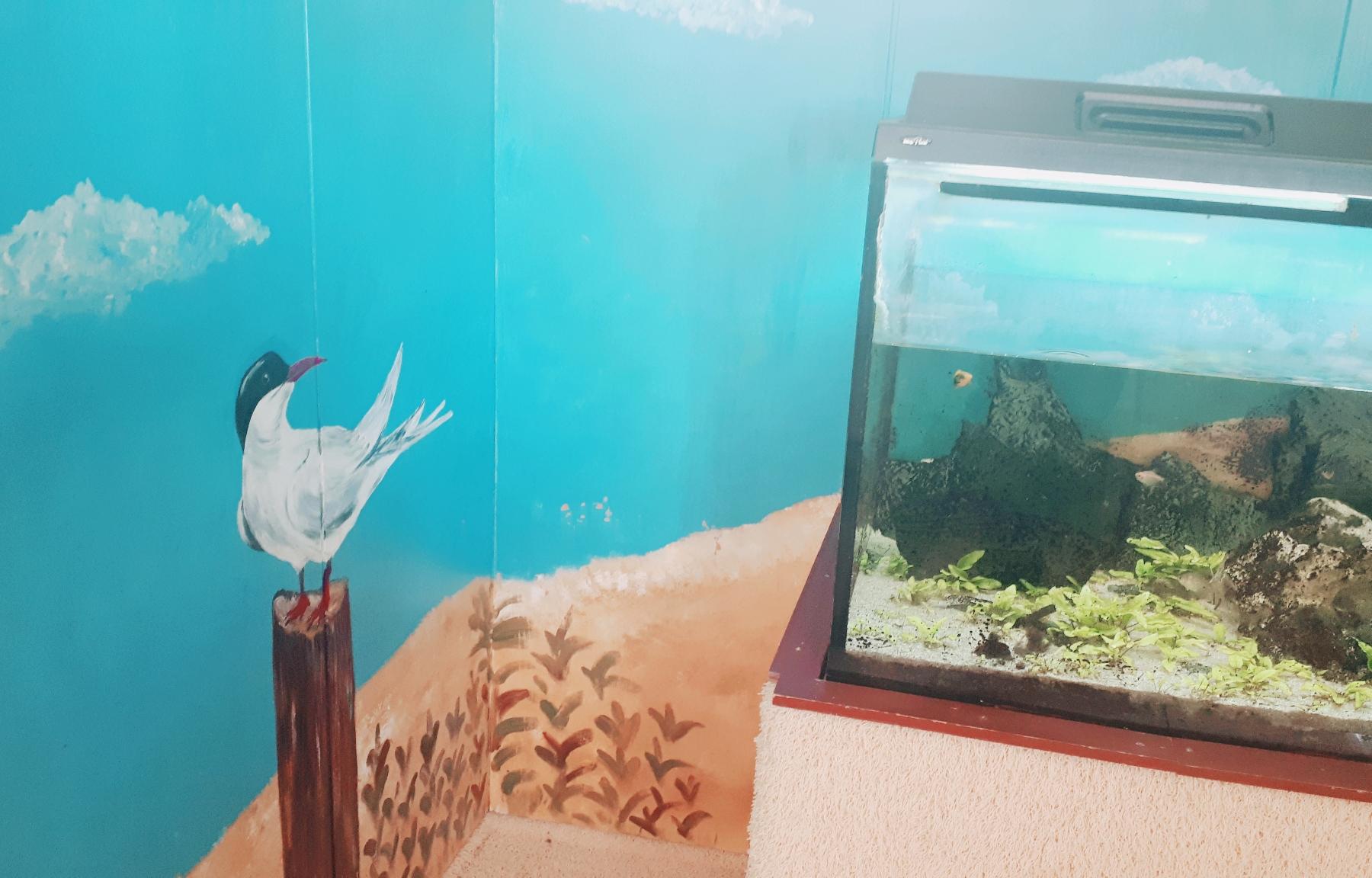 Unsere Fischecke 1