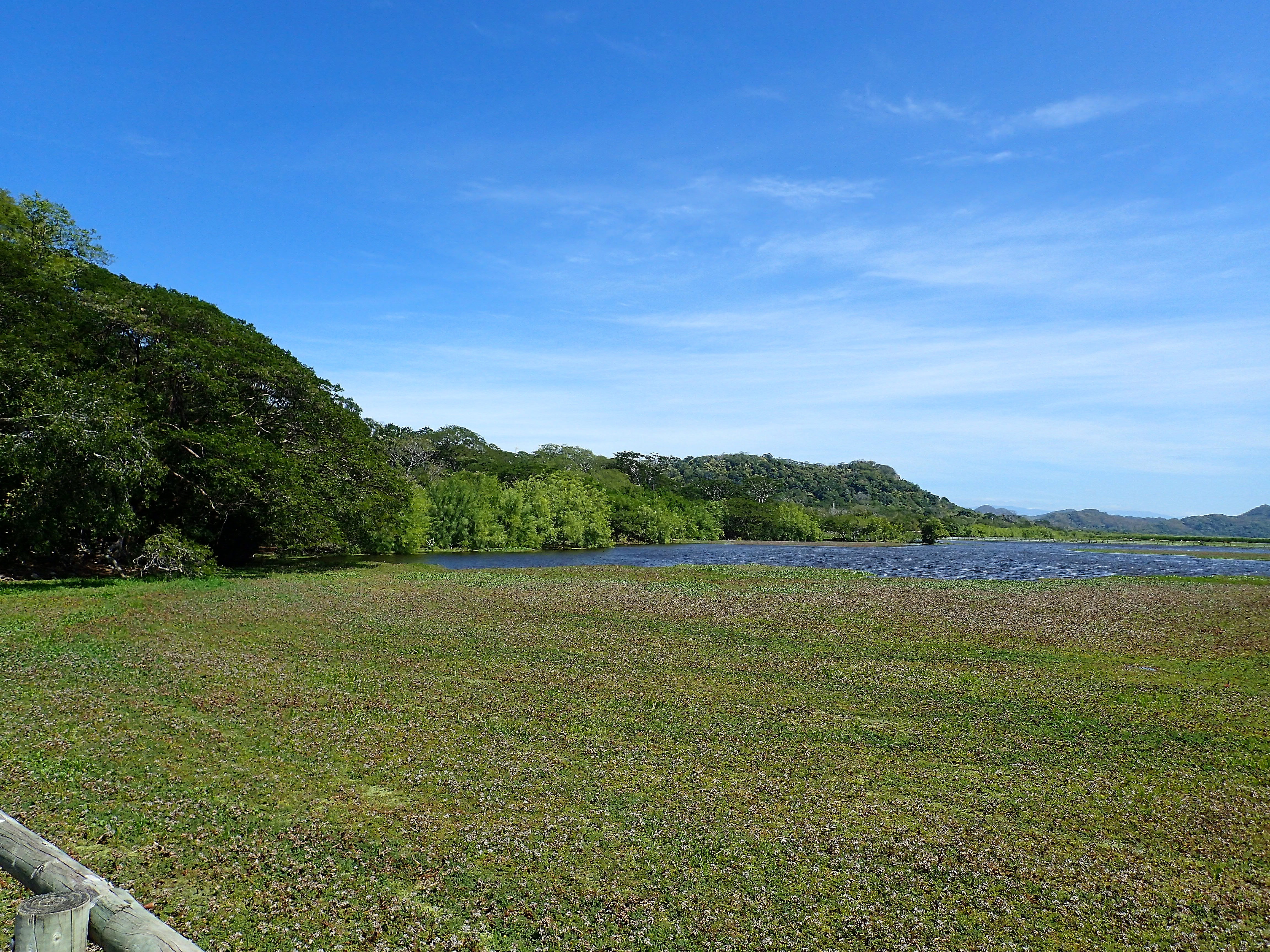 Palo Verde, COSTA RICA. missaventure blog