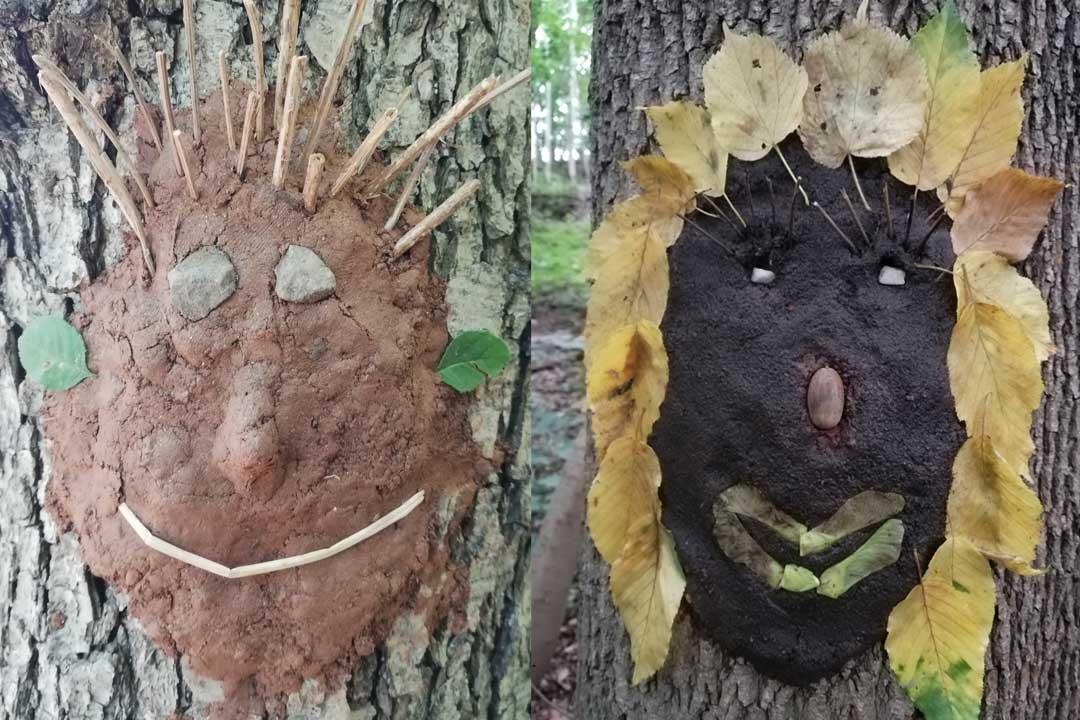 Projekttag - Erlebnisraum Wald