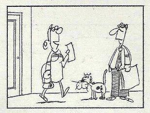 Allergia al gatto?