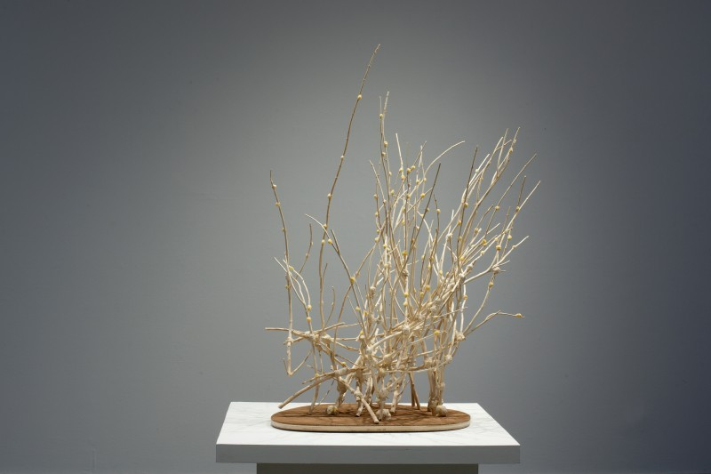 """Tree of Life in All Seasons: Late Winter-Budding "", 2012, mixed media with persimmon shoots, 45x35x26"""