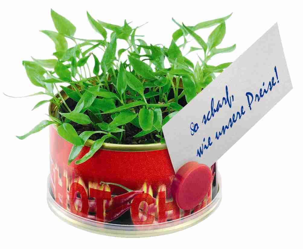 Grüne Werbung - Blumen als Werbeartikel