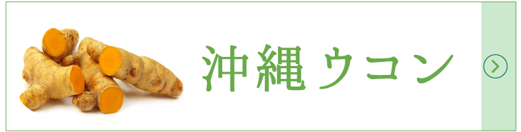 沖縄ウコン
