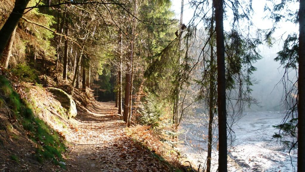 Wanderweg um den Amselsee herum in schönster Spätherbstsonne!