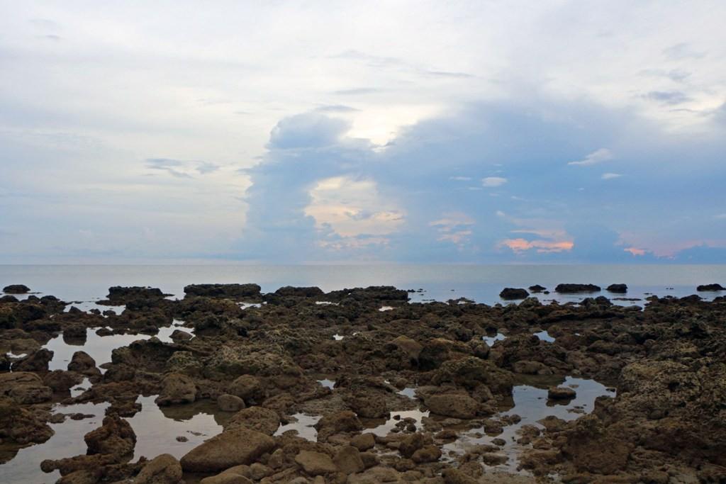 Hier sind wir am abgestorbenen Korallenriff in der Nähe von Siaton, also an der Südspitze der Insel Negros