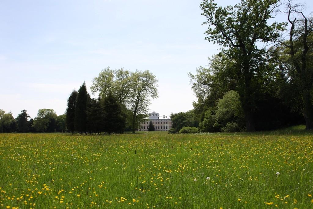 Das Wörlitzer Schloss von Schochs Wiesen aus gesehen