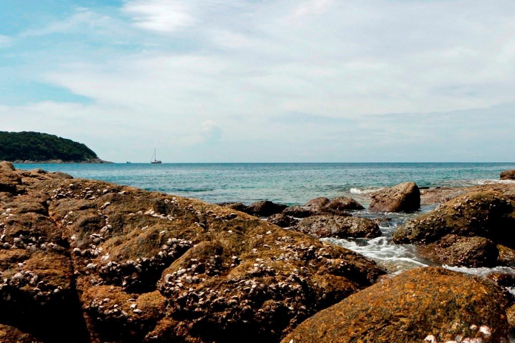 Die Klippen von Nai Harn Beach, idealer Lebensraum der Brandungs- oder Felsenkrabbe!