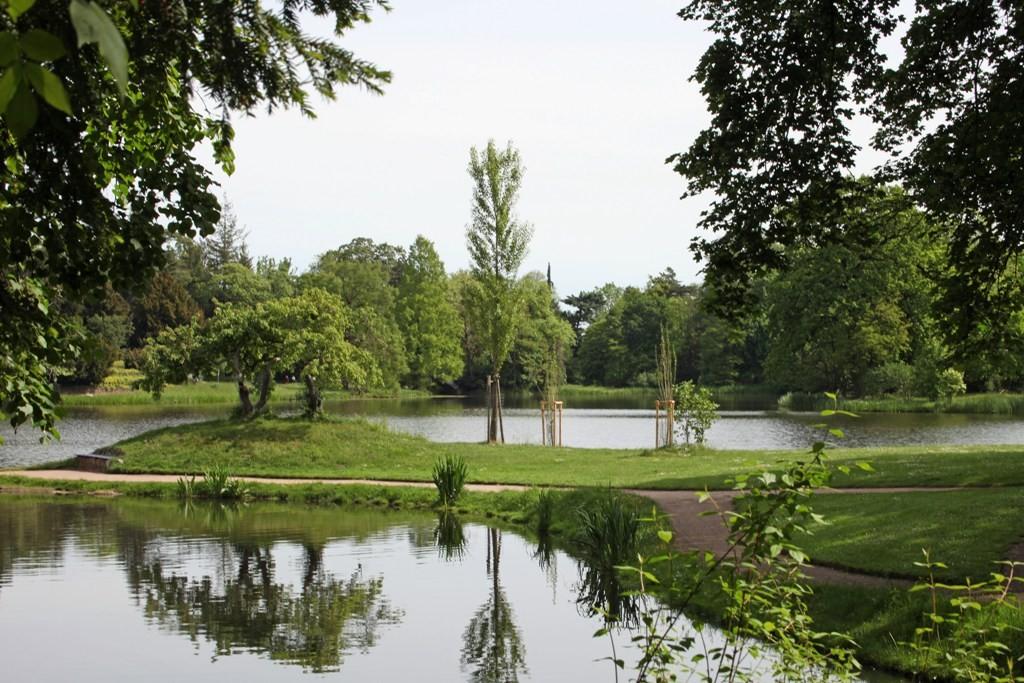 Wörlitzer Wasserlandschaft die einfach nur gefällt
