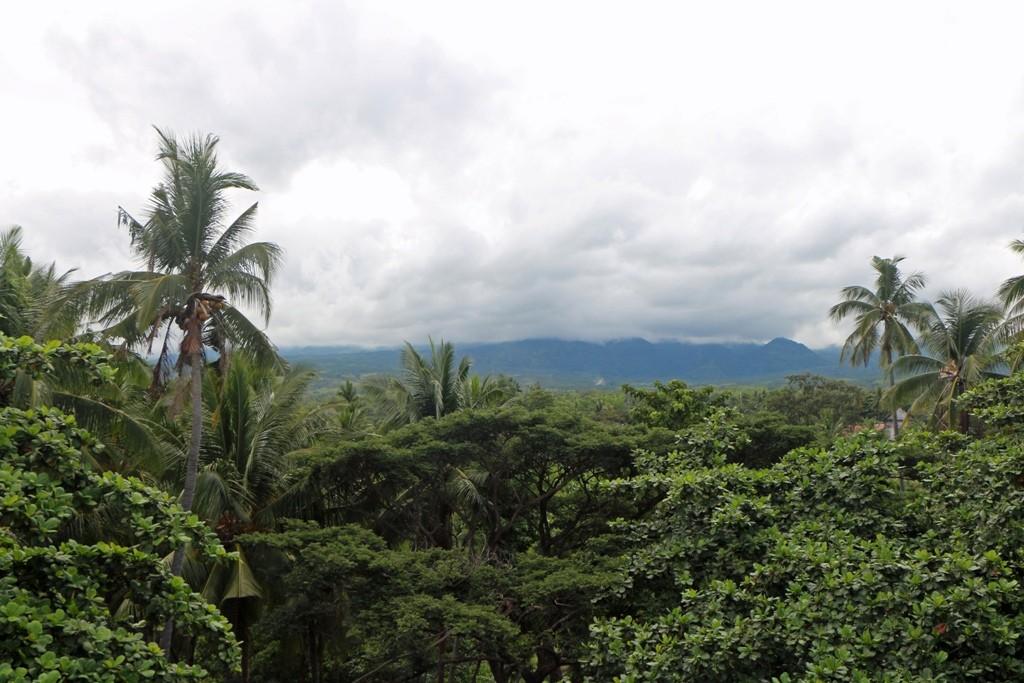 Der letzte Tag auf Negros und im Gracey Dive Resort, Blick vom Dachboden in die Umgebung!