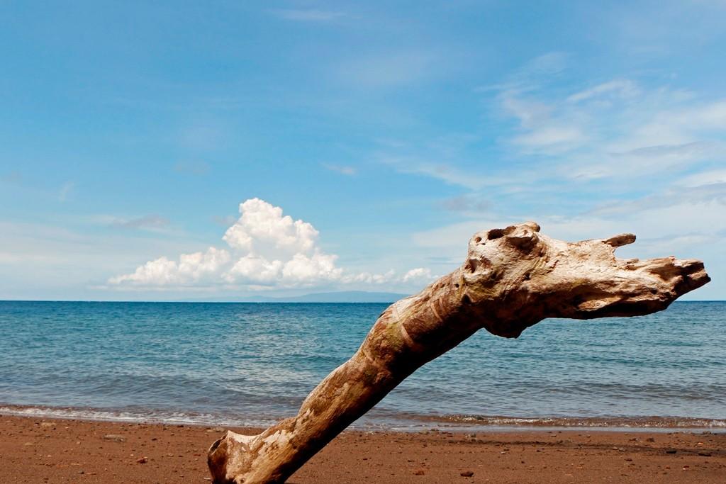 Auch hier ist die Natur der Designer für dieses schöne Strandfoto!