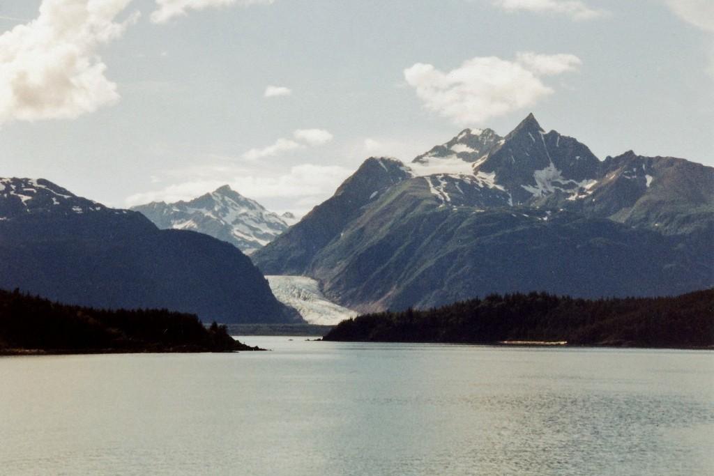 Gletschen im Chilkat Inlet (Chilkat State Park)
