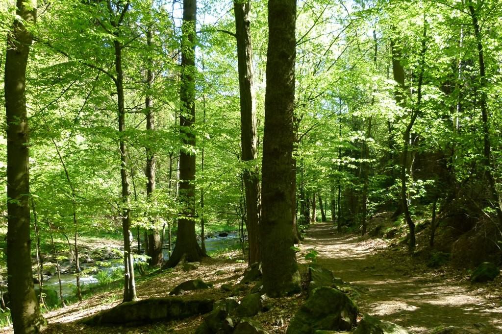 Der Karl Lampe Weg, ein sehr schöner und abwechslungsreicher Wanderweg