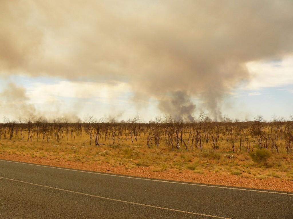 Buschbrände in Hülle und Fülle, hier am G.-Northern HWY sind an der Tagesordnung und interessieren niemanden.