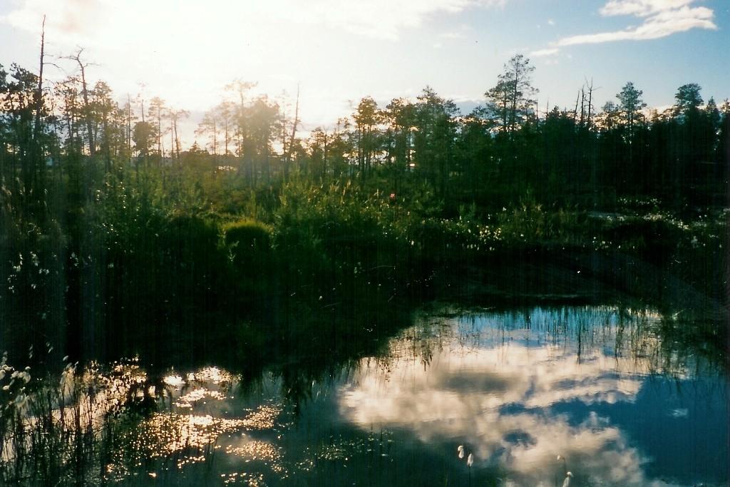 Die sumpfigen Landschaften Westsibiriens gehört zu den acht russischen Großlandschften
