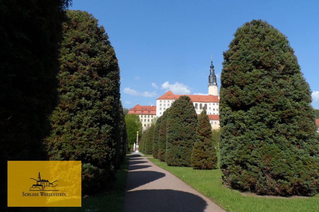 ...im Schlossgarten der Burg Weesenstein